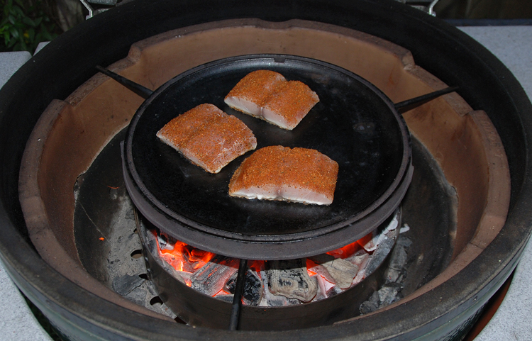 grilling salmon with XL Spider and cast iron griddle